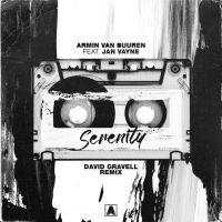 Armin van Buuren feat. Jan Vayne - Serenity (David Gravell Remix)