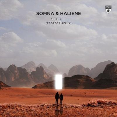 Somna & Haliene - Secret (ReOrder Remix)