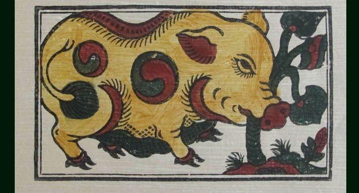 Image result for tranh heo ăn lá ráy đông hồ