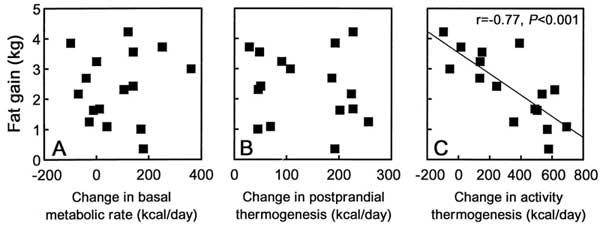 Skillnader i basalmetabolism, postprandiell termogenes (d.v.s. ökad energiförbrukning efter mat) och energiförbrukning från fysisk aktivitet i studien