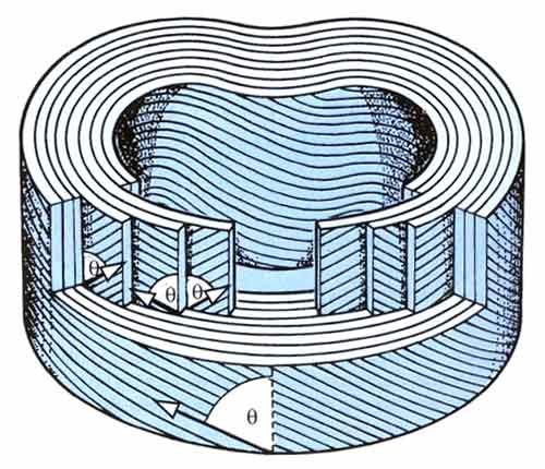 Bilden visar hur olika lager (lamellae) ligger i vinkel mot varandra