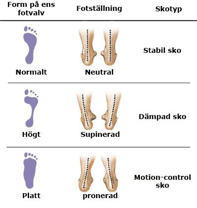 Olika typer av fotvalv leder ofta till olika typer av belastning vid  stående och baserat på detta så rekommenderar man olika typer av skor ea065c68f53a3