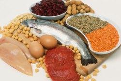 Proteinrik kost