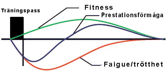 En illustration av Fitness-Fatigue modellen för träningsanpassning
