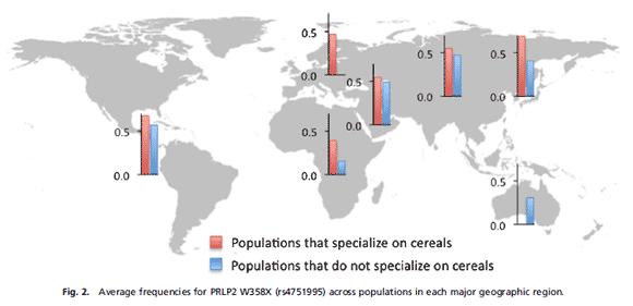 Mängden PRLP2 beroende på livsstil i olika folkgrupper