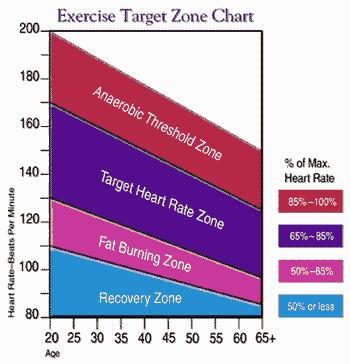 En klassisk graf på gymmet