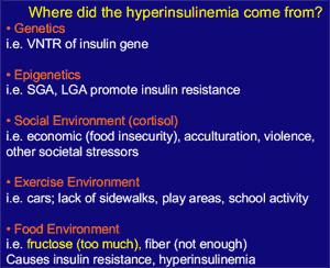 Möjliga orsaker till höga insulinnivåer i vila