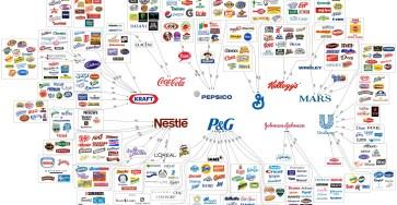 En illustration över vilka företag som i princip äger hela matmarknaden i världen