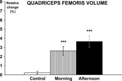 Muskelvolym i quadriceps femoris efter 10 veckors styrketräning på morgon eller eftermiddag (7). Som du ser har båda träningsgrupperna åstadkommit en statistiskt signifikant ökning men ingen har ökat bättre än den andra.