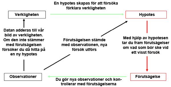 LCHF vs vetenskap