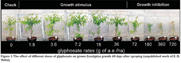 Bekämpningsmedel i låga doser kan få växterna att växa mer