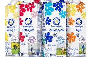 Är mjölk farligt?