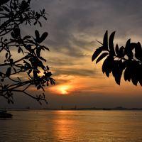 「シラチャ」の海沿いを歩きながら~「コー ロイ パーク」Wat Koh Royから夕陽を眺める!!