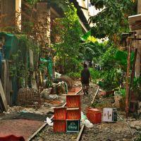 名前は分からないクイッティアオ屋、バンコク クロントゥーイ市場の近くにある安くて旨い店!!