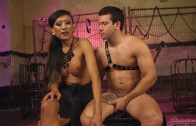 Shemale Asian Venus Lux & Reed Jameson