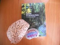Cerebro de emergencia