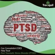 Can Cannabidiol (CBD) Help Treat Post Traumatic Stress Disorder (PTSD)?