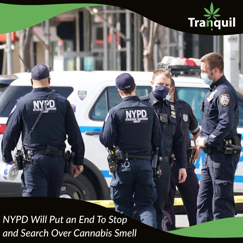 NYPD Will Put An End To Stop and Search Over Cannabis Smell