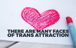 There are many trans attractions