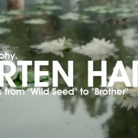"MORTEN HARKET SOLO DISCOGRAPHY - all the albums from ""Wild Seed"" to ""Brother"" [w. Videos]"