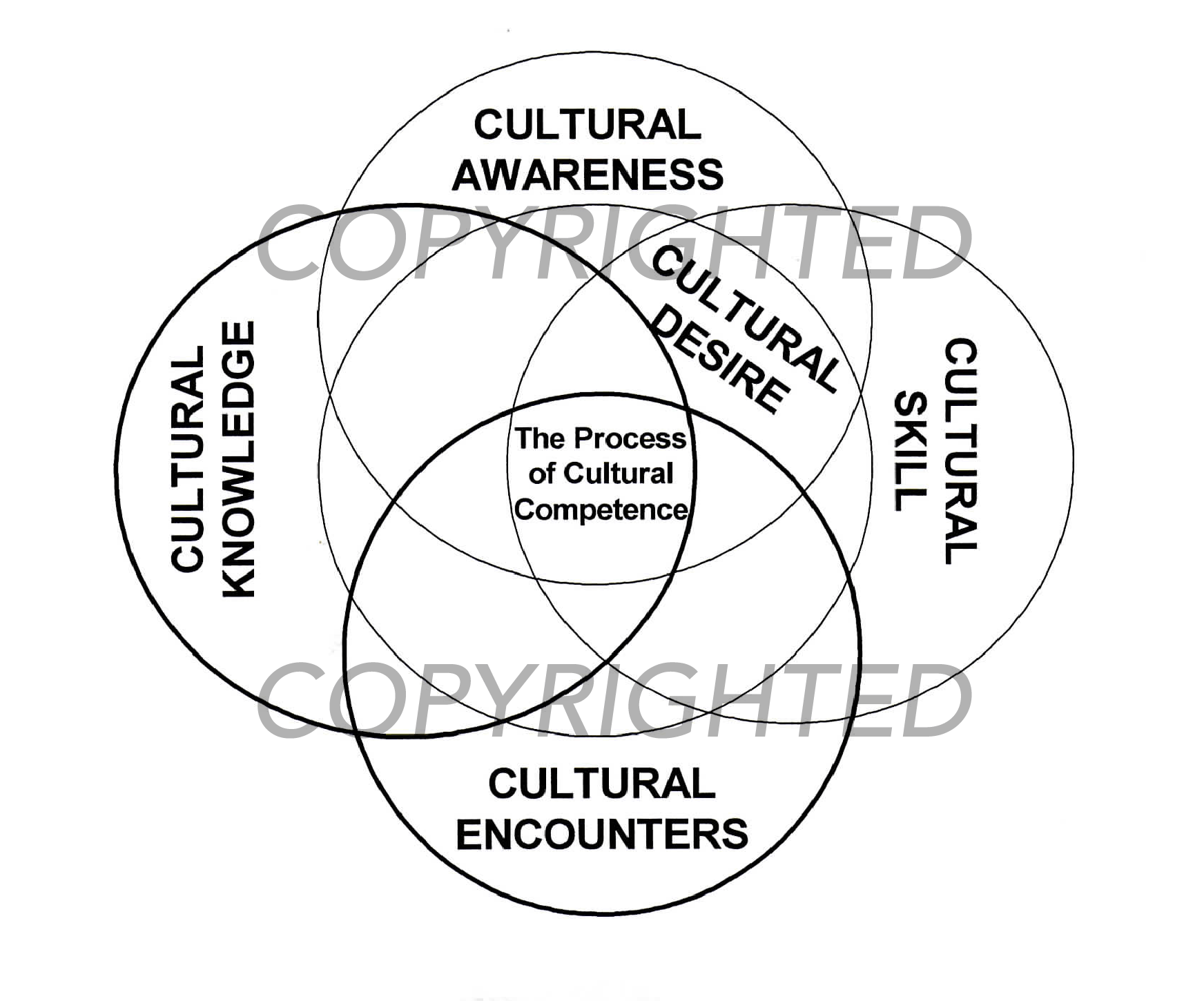 The Process Of Cultural Competence In The Delivery Of