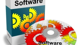 Software-Royalty-Taxation