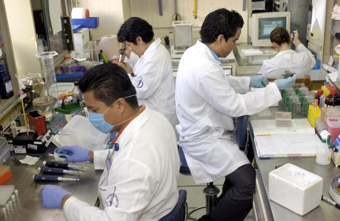 Investigadores UNAM
