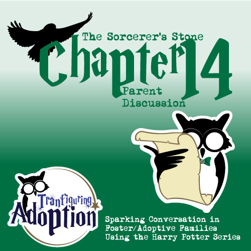 Transfiguring-adoption-chapter14-parent-foster-care-harry-potter