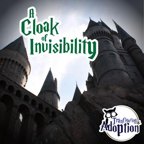 cloak-of-invisibility-betsy-crockett-adoption-transfiguring-social-media