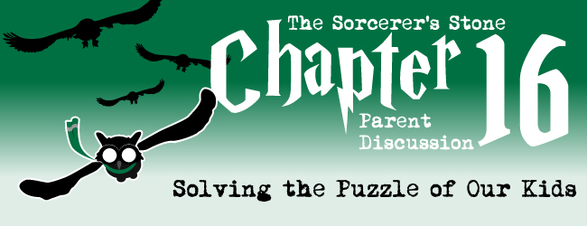 chapter16-parent-discussion-harry-potter-adoption