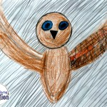owl-blue-eyes-potter-inspired-colored-pencil-paper-matthew-fink-2015