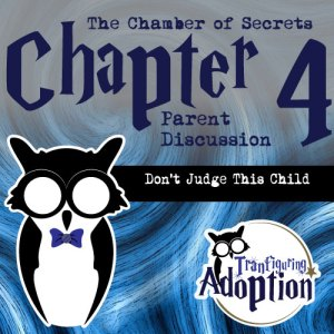 chapter-4-chamber-of-secrets-foster-parents-social-media