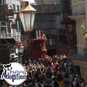 diagon-alley-universal-orlando-crowds-transfiguring-adoption