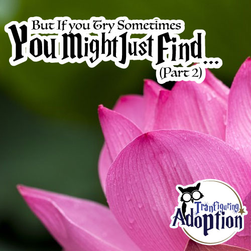 you-might-just-find-part-2-adoption-story-foster-kids-social