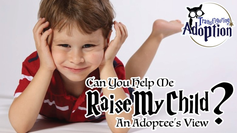 can-you-help-me-raise-my-child-adoptees-view-facebook