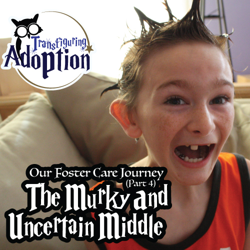 foster-care-journey-part-four-murky-uncertain-middle-adoption-pinterest