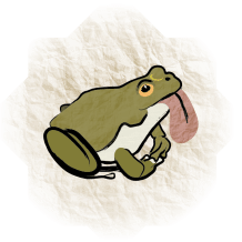 dipsy-toad-guide-to-magical-creatures-transfiguring-adoption