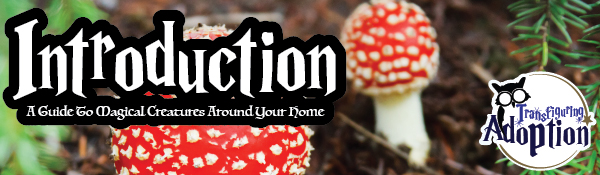 introduction-guide-magical-creatures-around-your-home-header