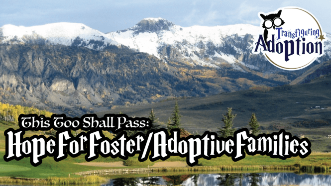 this-too-shall-pass-hope-foster-mom-transfiguring-adoption-rectangle