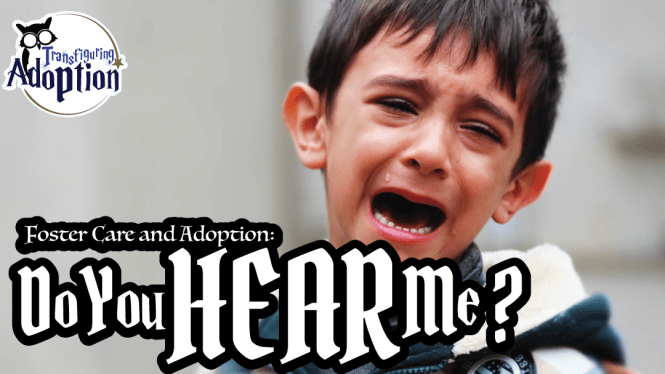 do-you-hear-me-foster-care-adoption-margie-fink-rectangle