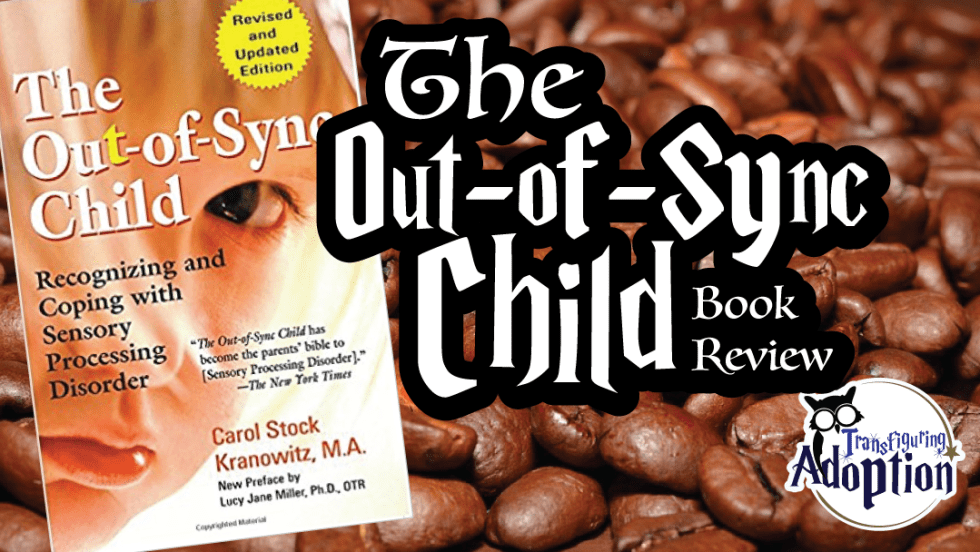 out-of-sync-child-book-review-rectangle