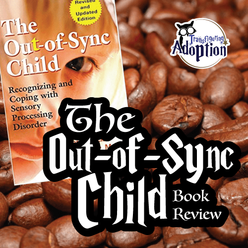 out-of-sync-child-book-review-square