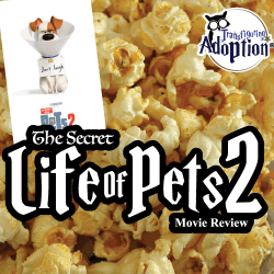secret-life-of-pets-2-universal-studios-movie-review-transfiguring-adoption-square