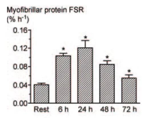 fenetre anabolique et taux de synthèse myofibrillaire