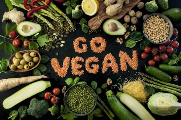 protéine végétale pour végan