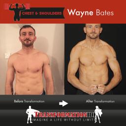 HQ Chest & Shoulders 24 1000px x24 Template Wayne Bates