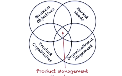 """The Problems with the """"CEO of the Product"""" metaphor"""