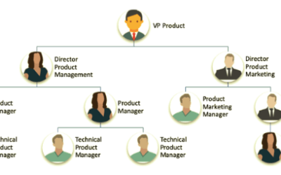 So, What is Software Product Management?