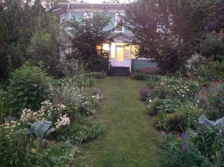 Permaculture Garden at Lillie House 200 +Species of edible and medicinal plants