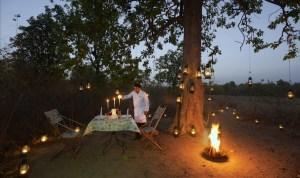 Bush Dinner in Pench Tree Lodge, India